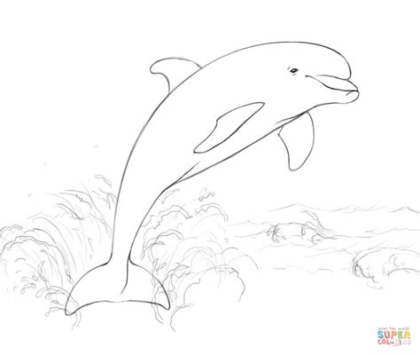 Dolphin Jumping Out Of Water Drawing