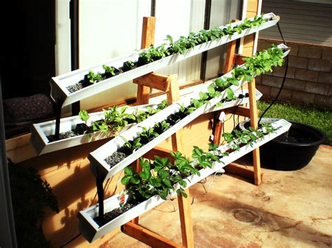 vertical garden aquaponics factors  plants grow