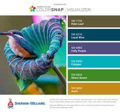color palettes, sunrises and colors on pinterest