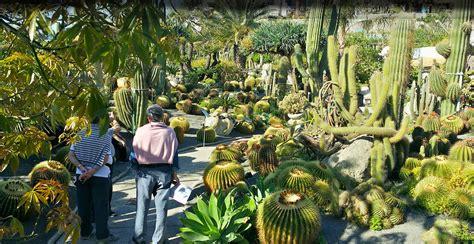 giardini ischia ischia giardino botanico ravino pagina ufficiale cactus
