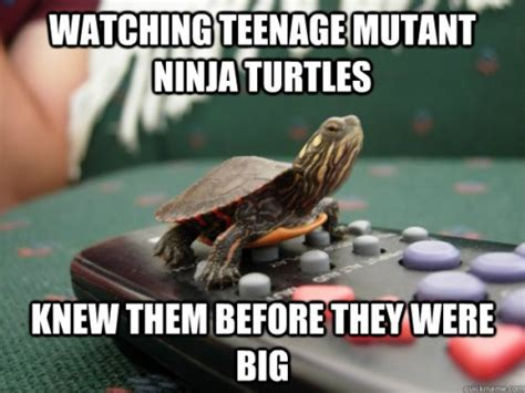 Ninja Turtles Meme - pizza ninja turtles meme www imgkid com the image kid