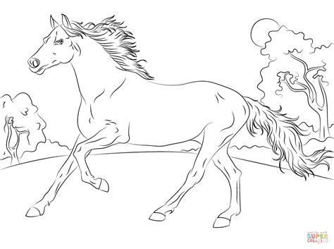 coloring pictures of horses running running arabian coloring page free printable