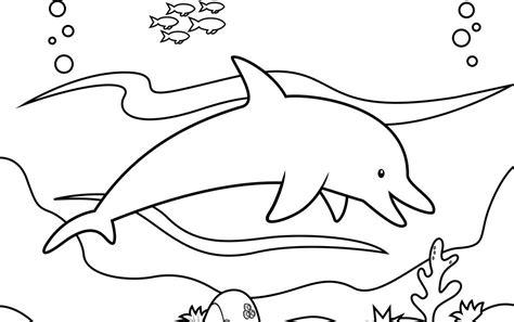 imagenes infantiles para pintar dibujos infantiles de delfines para colorear