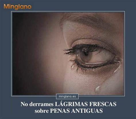 llora alegria autores espanoles 8408029479 frases para apoyar a alguien que llora