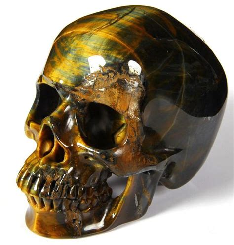 5 2 quot tiger eye carved skull realistic