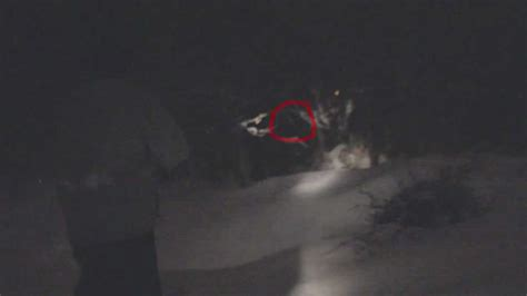 Sighting Of by Scary New Bigfoot Sighting In Utah