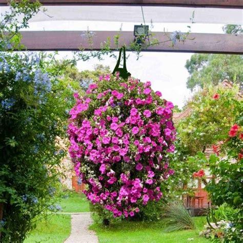 greena long hanging planter bags pack   garden street
