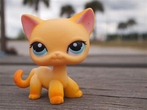 lps dogs and cats lps popular on lps popular littlest pet shops