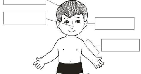 imagenes de cuerpo humano ingles did 225 cti blog actividades del cuerpo humano