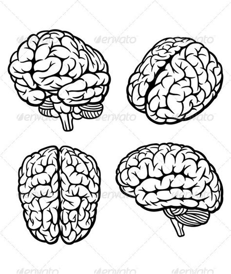 brain pattern drawing 58 best cerebro brain et alia images on pinterest the