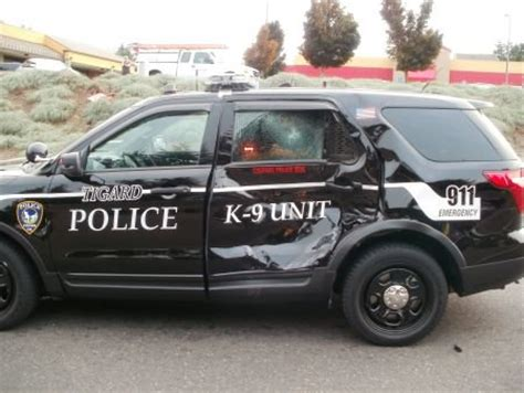 multi vehicle crash includes tigard police k9 officer