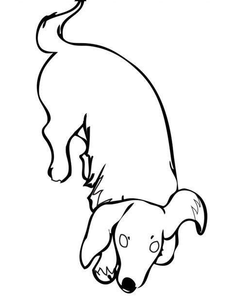 weiner dog coloring page weiner dog colouring pages