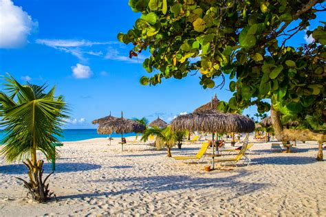 cruises only aruba cheap flights to aruba only 163 269pp return this may