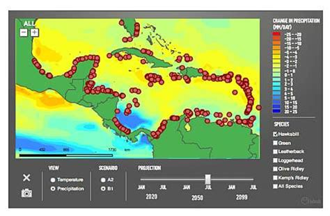 climate change   wider caribbean wwf