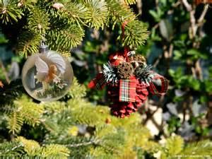 imagenes de navidad fondos de navidad angelito en la bola fondos de pantalla