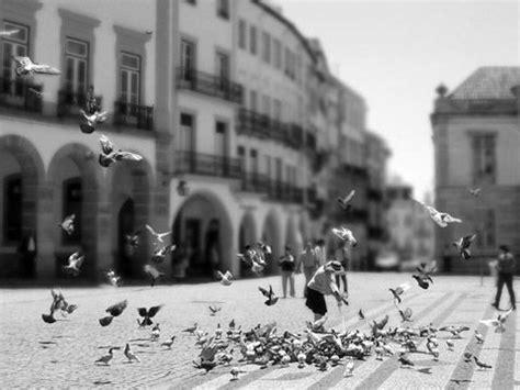 fotos artisticas blanco y negro 20 b 228 sta bilderna om fotografia artistica en blanco y