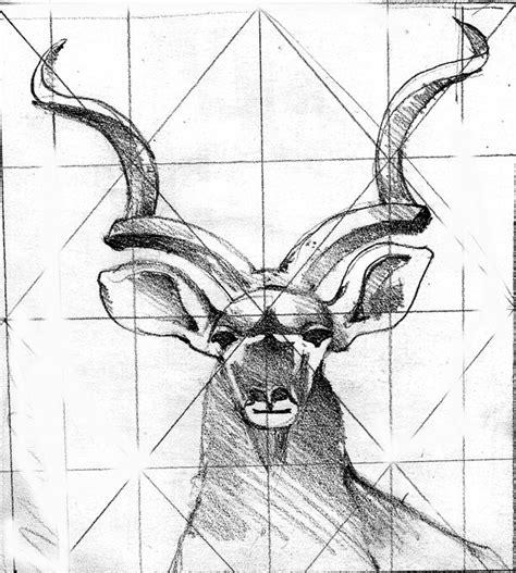 kalahari tattoo instagram kudu drawing animal drawings pinterest drawings