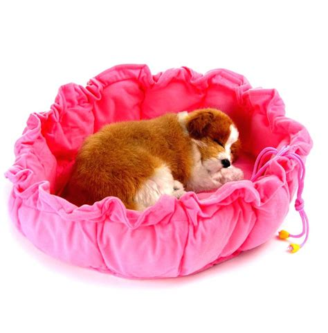 cute girl dog beds bedroom sweet sleepy puppies dog beds bean ll amazon