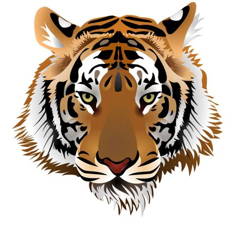 Tshirt Kepala Macan One Clothing set of tiger vector picture 03 graphics