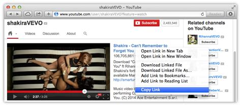 fidio yautube how to download vevo video from youtube or vevo com