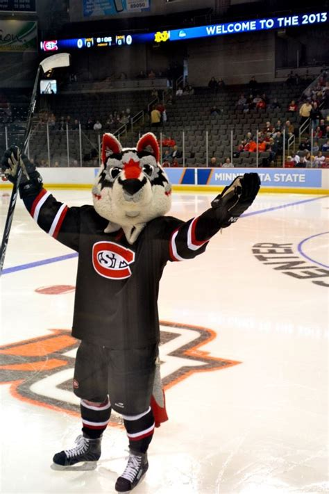 Scsu Mba Program by 78 Best Images About St Cloud State On