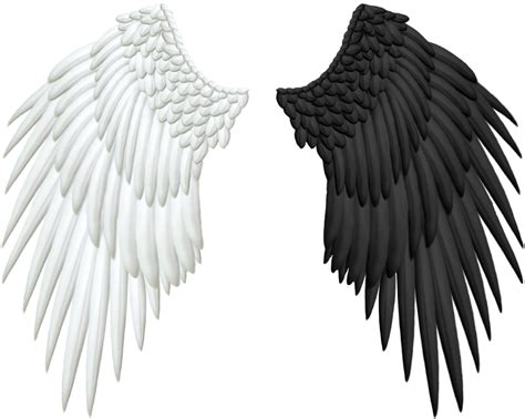 Half Wing Black And Evil Wings Png By Thy Darkest Hour On