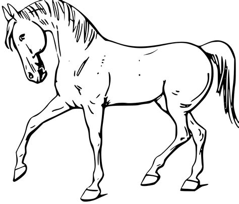 coloriage cheval blanc ancenscp
