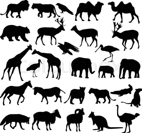 printable zoo animal silhouettes drucken stock vektor colourbox