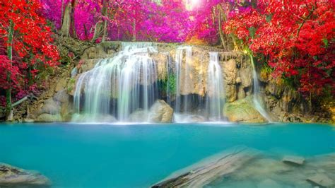beautiful waterfalls with flowers waterfall thailand erawan falls erawan national park