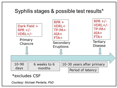 rpr test syphilis tests