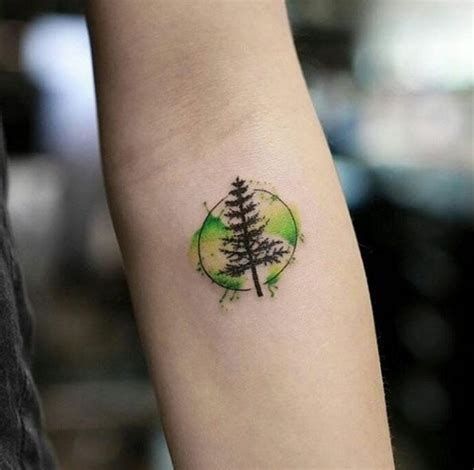 spruce tree tattoo watercolor tree designs ideas and meaning