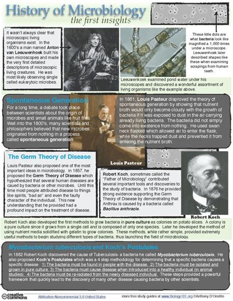 unauthorized biography definition pinterest the world s catalog of ideas