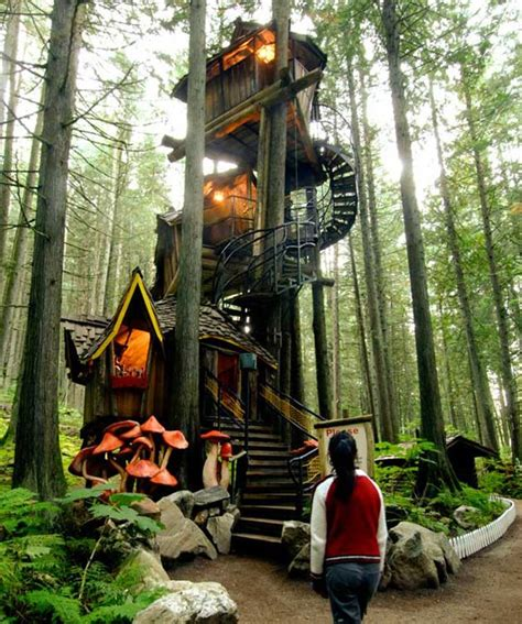 coolest treehouses the world s coolest tree houses