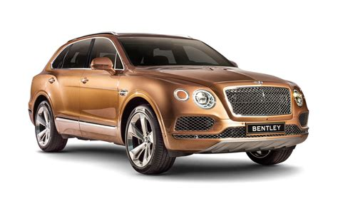 bentley suv 2017 2017 bentley bentayga dissected feature car and driver