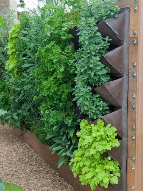 Vertical Herb Garden Ideas Herb Wall On Vertical Garden Wall Vertical