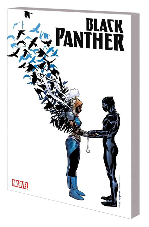 black panther a nation our book 3 black panther graphic novel book 3 nation our