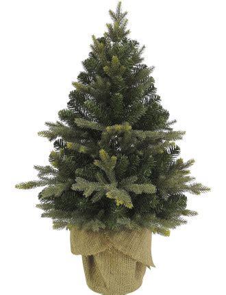 213cm christmastrees trees buy trees david jones