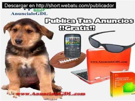 avisos gratis y clasificados gratis publicar anuncios gratis software para publicar anuncios clasificados gratis youtube