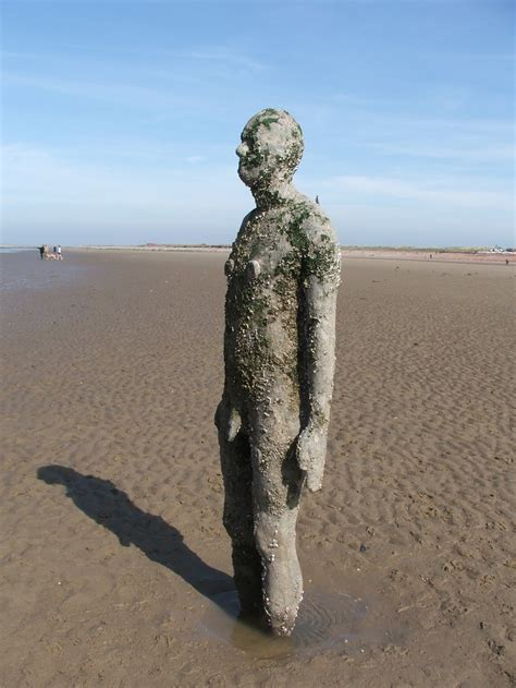 antony gormleys sculptures at crosby visitengland 33 best images about sculpture on