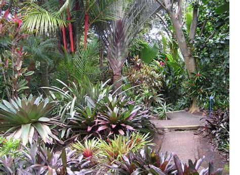 World Botanical Garden World Botanical Gardens 275 Acres Of Hawaiian Only In Hawaii