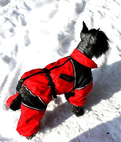 pattern for dog coats for winter the 25 best dog winter coat ideas on pinterest dog