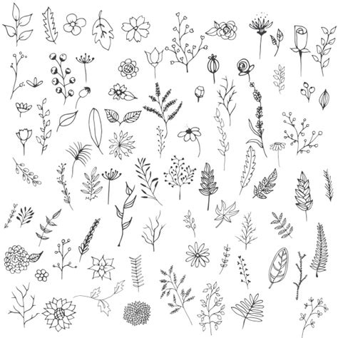 flower doodle ai flowers collection vector free