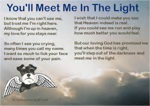 Pet loss poem you ll meet me in the light