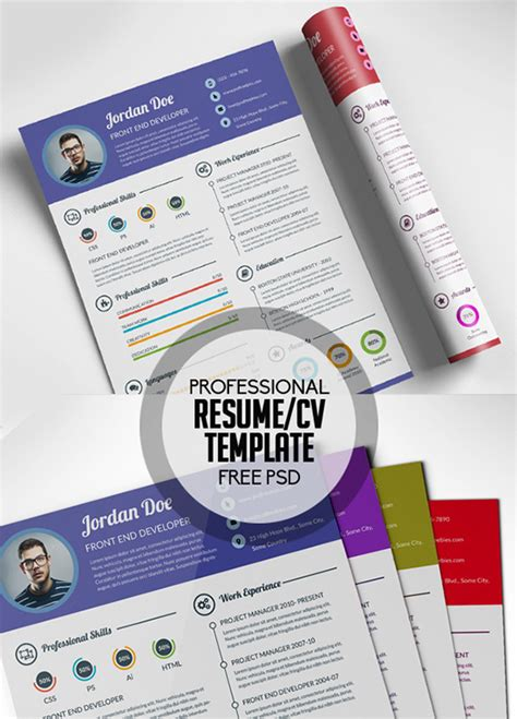 infographic resume template psd 28 infographic resume templates free premium