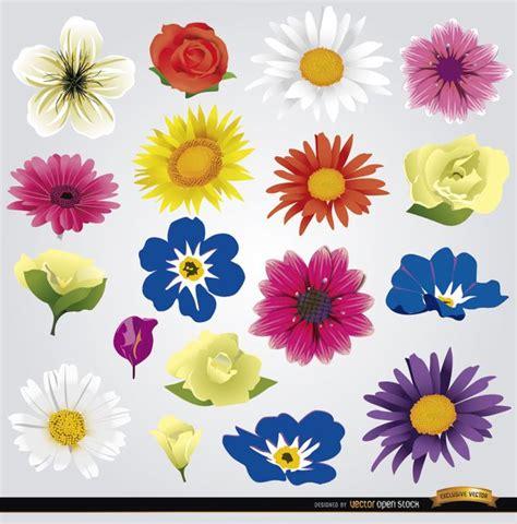 imagenes vectores de flores vectores gratis flores im 225 genes taringa