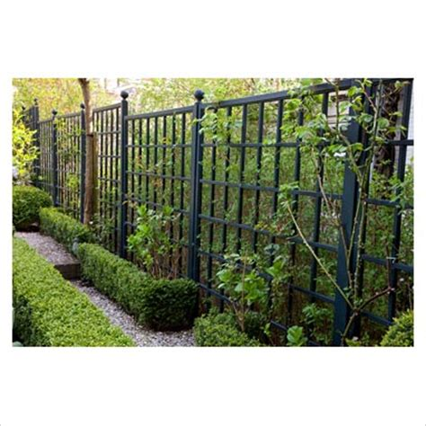 Black Garden Trellis Gap Photos Garden Plant Picture Library Black