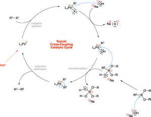 Suzuki Miyaura Coupling Reaction Mechanism Suzuki Cross Coupling Name Reaction