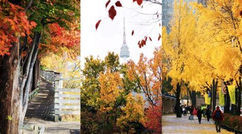 korea autumn  seoul fall foliage destinations