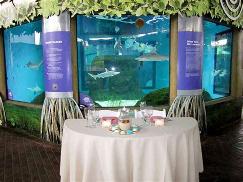 shark tank table aquarium reception