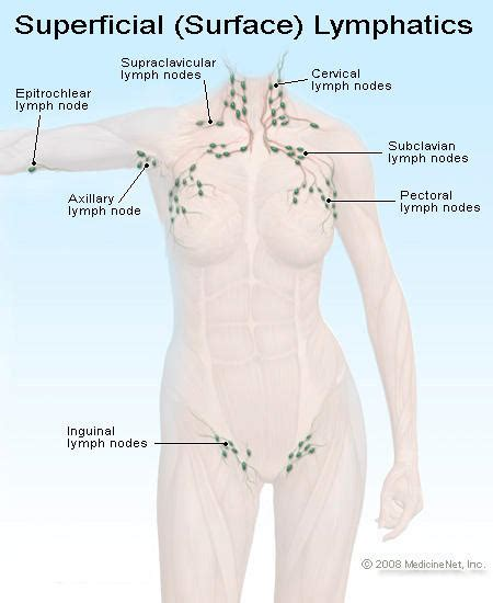 how to treat glands in armpit swollen remedies for swollen armpit lymph nodes answers on healthtap